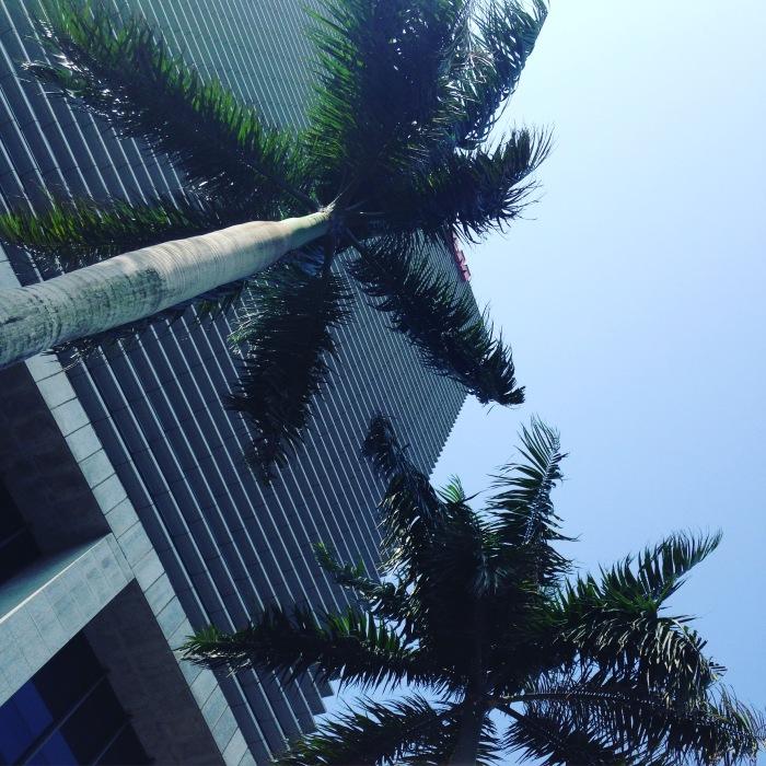 Hanoi in the sunshine, Vincom Center