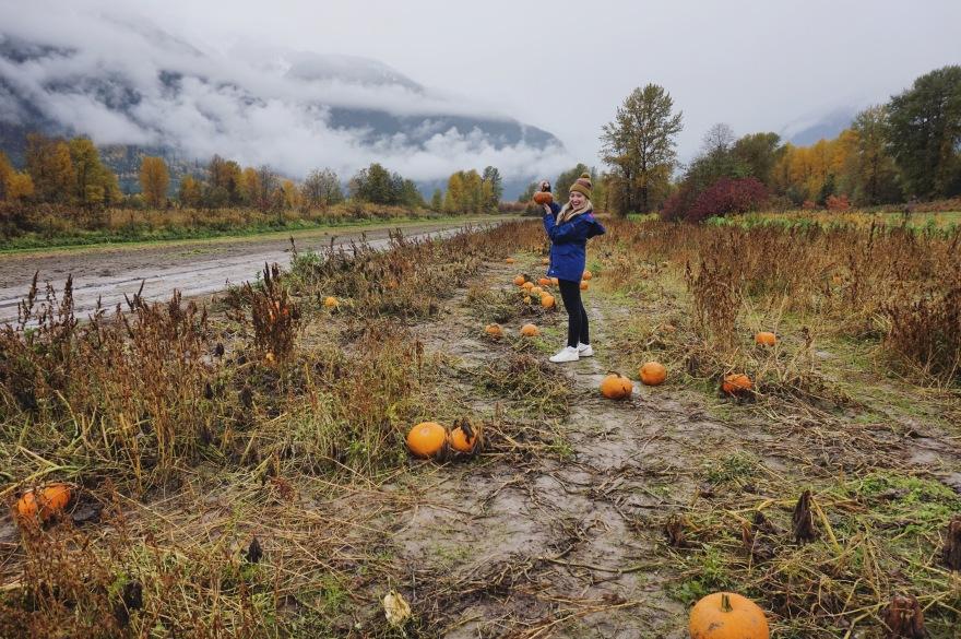 April Abroad Pumpkin Picking Pemberton